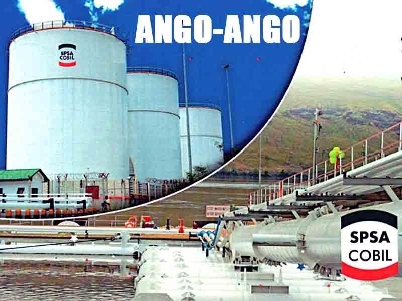 AMICONGO-SLIDE-_0009_COBIL-SPSA