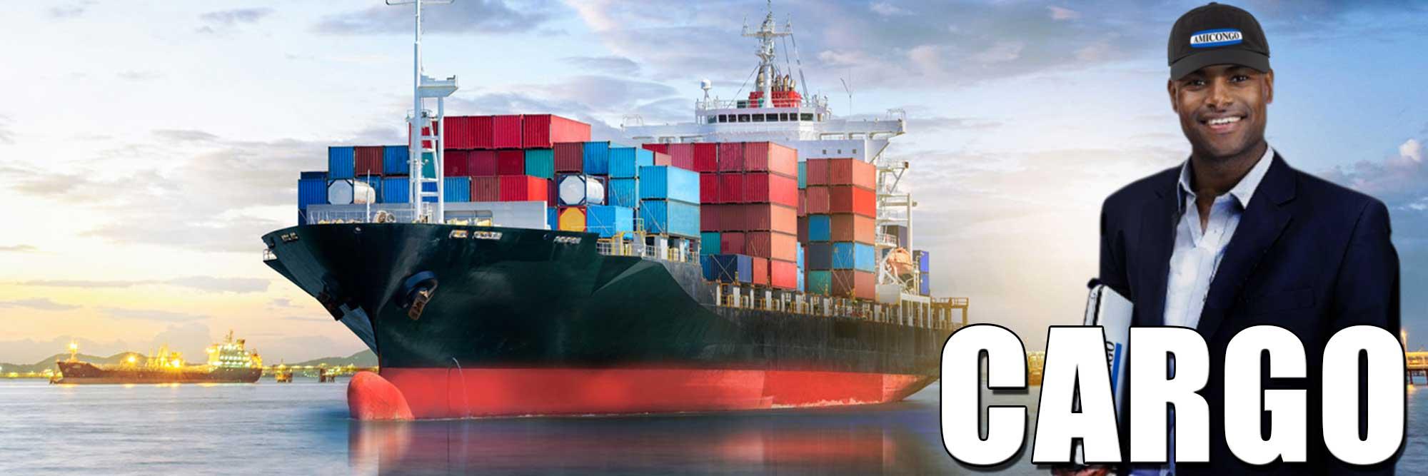 Permalien vers:Cargo général à  l'importation